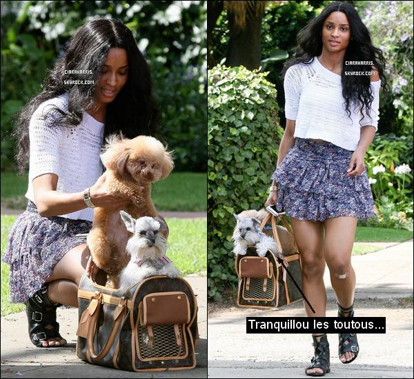 07/07/11: Ciara se promenait dans Beverly Hills (avec ses chiens) avant d'acheter quelques pâtisseries.