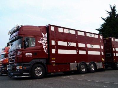 Bienvenue dans le Blog des Transporteur-Bovins