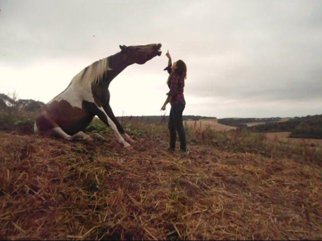 Quand tu as un rapport très fort avec un cheval, tu deviens un peu comme lui et lui devient un peu comme toi.