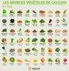 Le calcium et ses sources végétales
