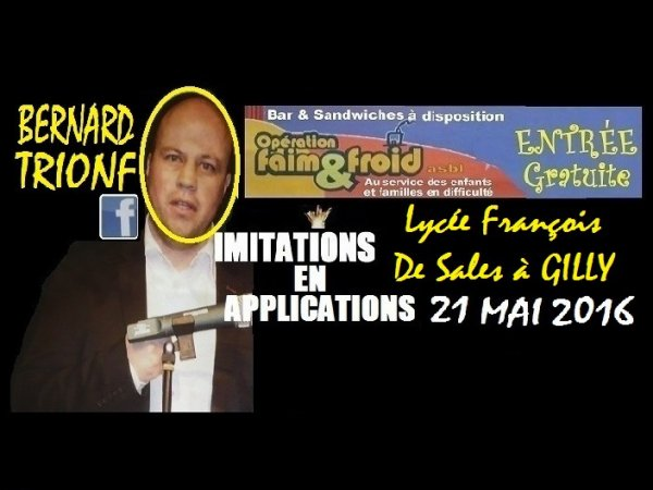 "BERNARD TRIONF "" IMITATIONS EN APPLICATIONS "" 2016"