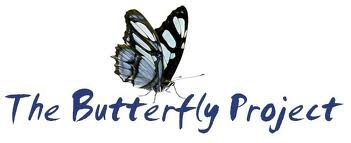 Prologue : The butterfly project