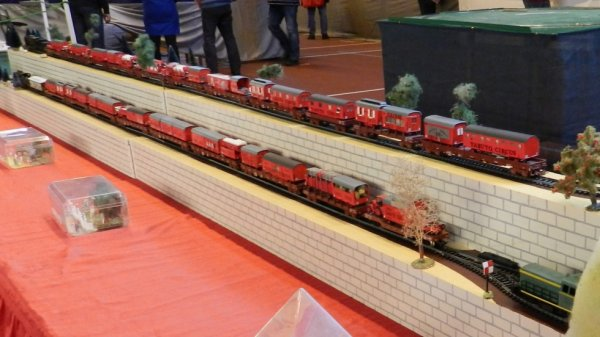 EXPOTRAIN à Goussainville 7/8 février 2015 - Le train cirque (2)