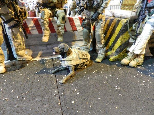 Ma visite à Compiègne au 7éme Salon Modélisme Maquettes Figurines (g5)