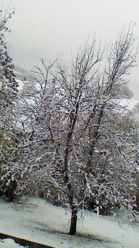 Première neige !!!!
