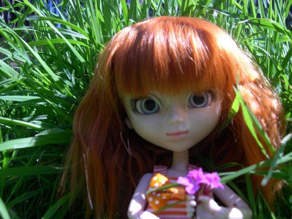 Prommenons nous dans le jardin ...