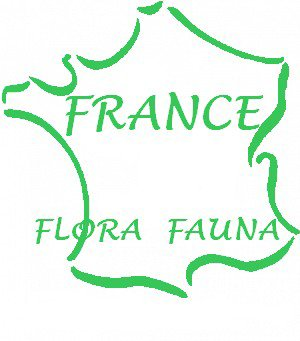 France-Flora Fauna 89