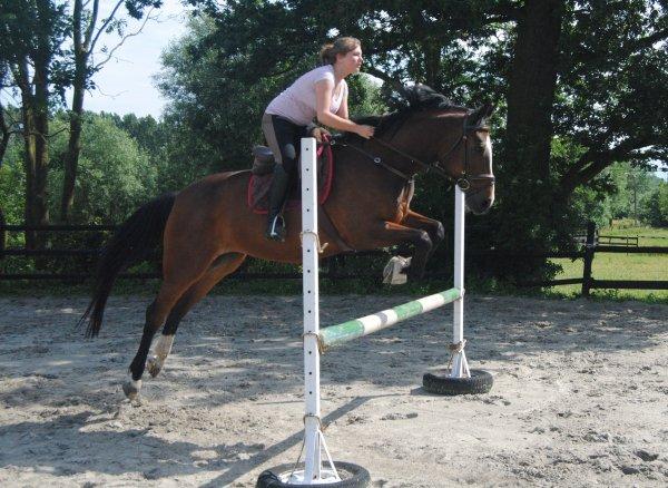 Lancer votre coeur au dessus de l'obstacle et votre cheval le suivra.