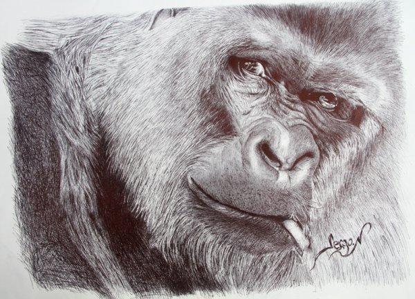 Gorilla au stylo bille noir