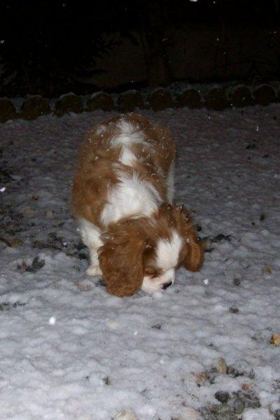 Déesse découvre la neige