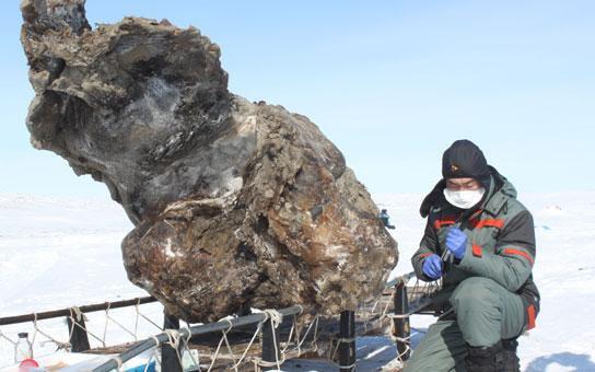 Les Russes ont retrouvé du sang de mammouth, premier pas vers le clonage