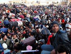 L'immigration, pain béni des Etats musulmans, malheur des Occidentaux