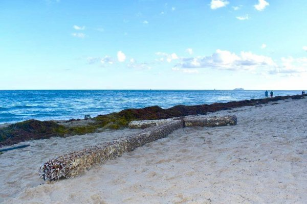 Une mystérieuse croix géante échouée sur une plage de Floride