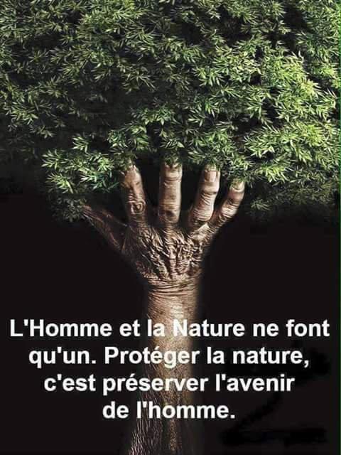 L'Homme et la nature, l'unicité gagnante