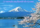 Photo de japon-mon-amour