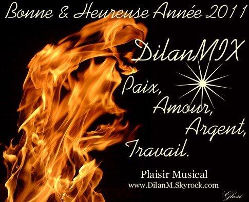 Bonne & Heureuse Année 2011 !!!