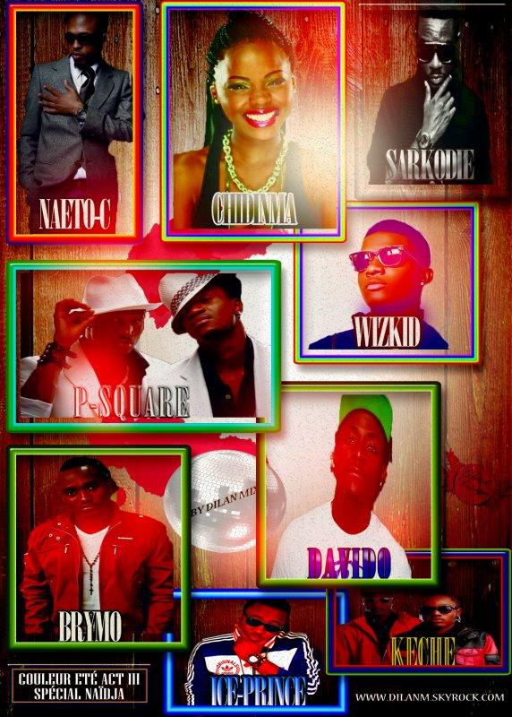 """Sélection Nîdja """"Musique Nigerianne""""  2012 !!!! Couleur Été Act III"""
