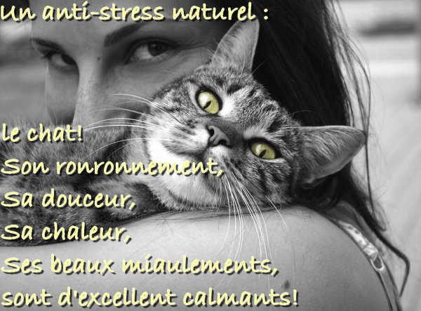 Un anti-stress naturel