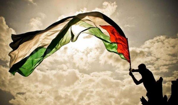 #FreedomPalestine