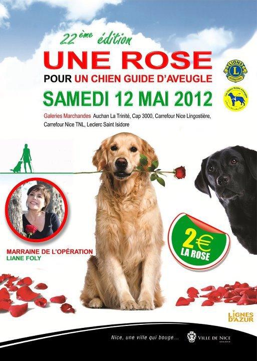 Une Rose pour un chien guide d'aveugle.