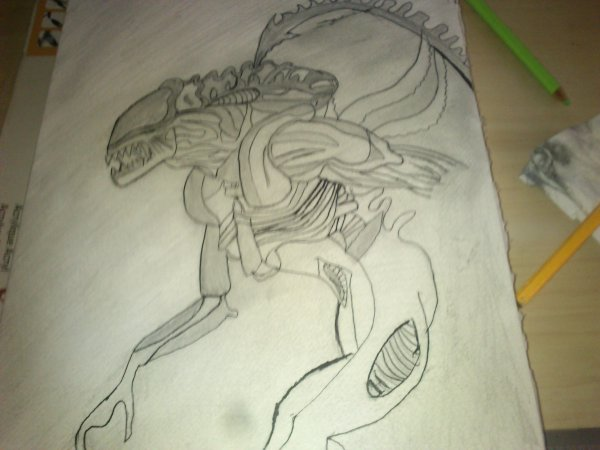 nouveau dessin