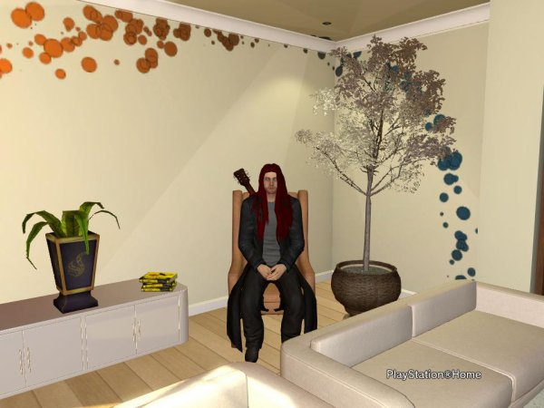 Mon PlayStation Home
