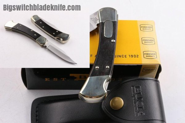 Switchblade - Buck 110 autoblade conversion switchblade knife. $189.99