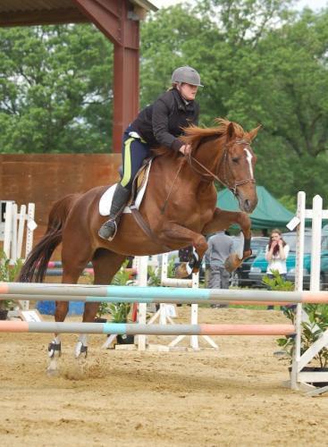 Pantalon Harry's Horse