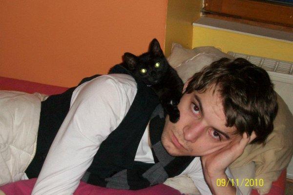 L'Ange Gardien de Cristal & son chat