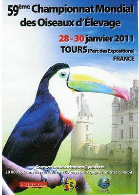 Le categorie che presenterò al Mondiale di Francia(TOURS)