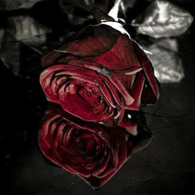 Roses Malades