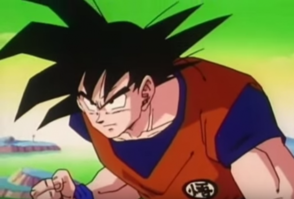 Dragon ball z: Sangoku