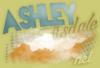 AshleyTisdaleNet