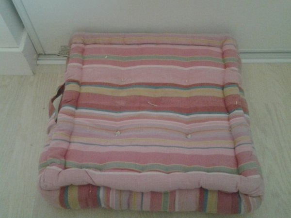 SON coussin