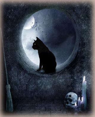 Il est difficile d'attraper un chat noir dans une pièce sombre, surtout quand il n'y est pas...