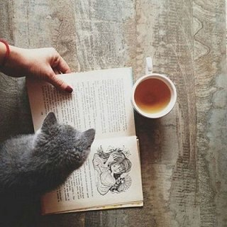♥ La lecture est une amitié [Marcel Proust] ♥