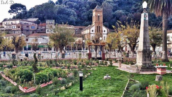 jardin publique de collo ville
