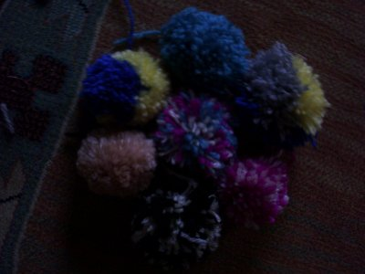 Mes Pompons...