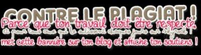 /!\ Blog secret /!\