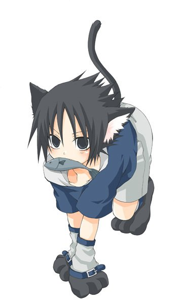 Sasuke le chat de retour ^^