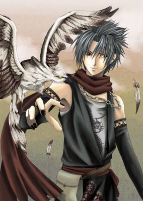 Sasuke avec son faucon