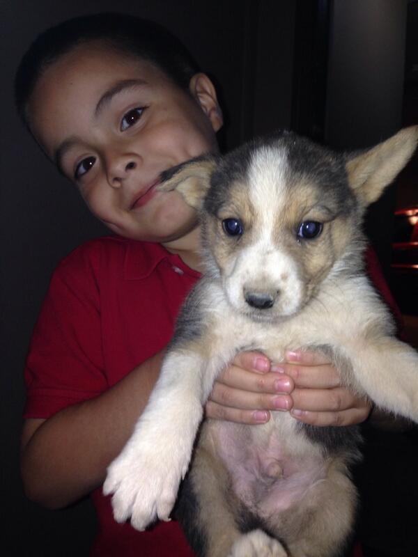 Mon ptit FrErE et NOtre nouveau petit chien !!!!!