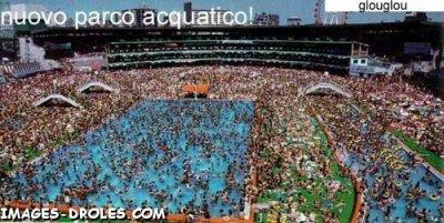 qui veux nager!!!