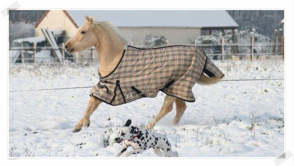 Et si on sortait affronter ce froid.