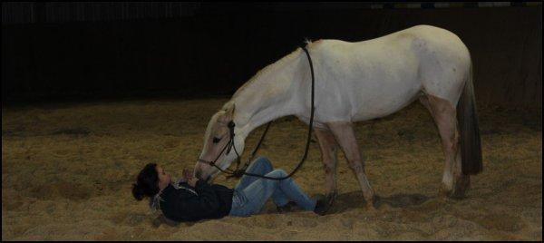 Il faut coller à la vie comme à un cheval.