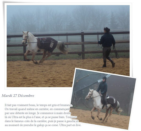 On ne peut prétendre maitriser un cheval tant qu'on ne se maitrise pas soit-même.