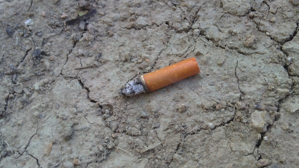 Un coeur c'est comme une cigarette. Il peut se réduire en cendre, se briser, partir en fumée...