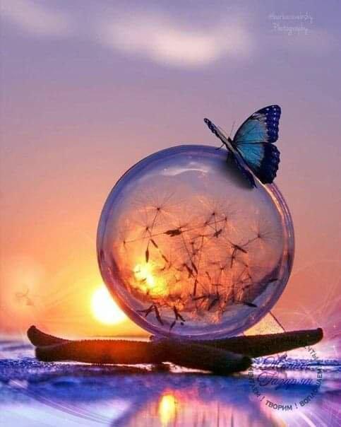 La vie décide parfois , pour nous , et nous ne pouvons pas toujours choisir , qui avoir ensuite , mais nous pouvons surement choisir , qui occupera une place spéciale ,dans notre coeur