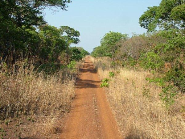 Route du coté de Machiya, Zambie.