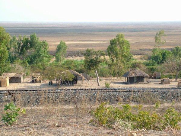 Zambie, lac Chilwa en saison sèche.